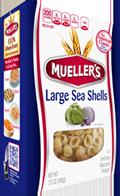 sea-shells-large 100% Semolina